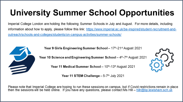 University Summer School Opportunity